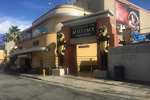 Revenge of the Mummy - The Ride, Los Angeles, United States