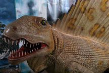 Torquay's Dinosaur World, Torquay, United Kingdom