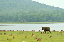Nagarhole National Park, Kodagu (Coorg), India