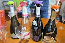 Champagne Alain Mercier et Fils, Passy-sur-Marne, France