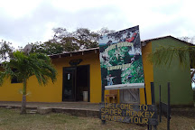 Spider Monkey Canopy Tours, La Cruz, Costa Rica