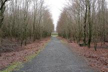 Bois de la Paix, Bastogne, Belgium