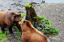 Fortress of the Bear, Sitka, United States