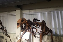 Idaho Museum of Natural History, Pocatello, United States