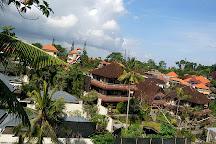 Sacred Monkey Forest Sanctuary, Ubud, Indonesia