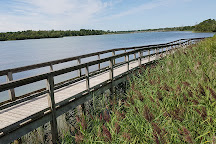Mel Swart Lake Gibson Conservation Park, Thorold, Canada