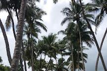 Habitation Pecoul, Basse-Pointe, Martinique