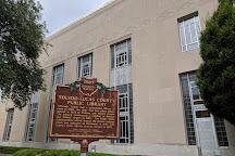 Toledo-Lucas County Public Library, Toledo, United States