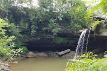 Buttermilk Falls Park, Beaver Falls, United States