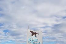 Ride the Beach Adventures, Port Douglas, Australia