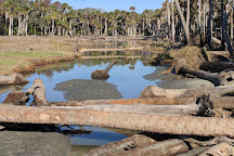 Cape Romain National Wildlife Refuge, Awendaw, United States