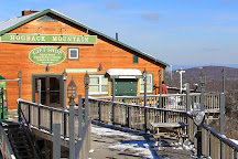 Hogback Mountain Gift Shop, Wilmington, United States