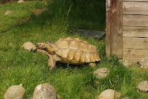 Zoo Al Maglio, Magliaso, Switzerland