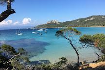 Le port de l'ile de Porquerolles, Porquerolles Island, France