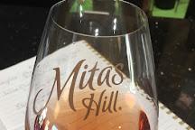 Mitas Hill Vineyard, McKinney, United States