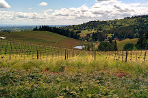 Winderlea Vineyard and Winery, Dundee, United States