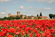 Castello di Spedaletto, Pienza, Italy