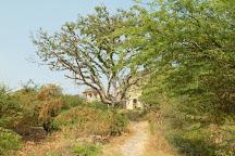 Taragarh Fort, Bundi, India