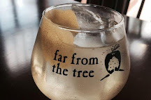 Far From The Tree Cider, Salem, United States