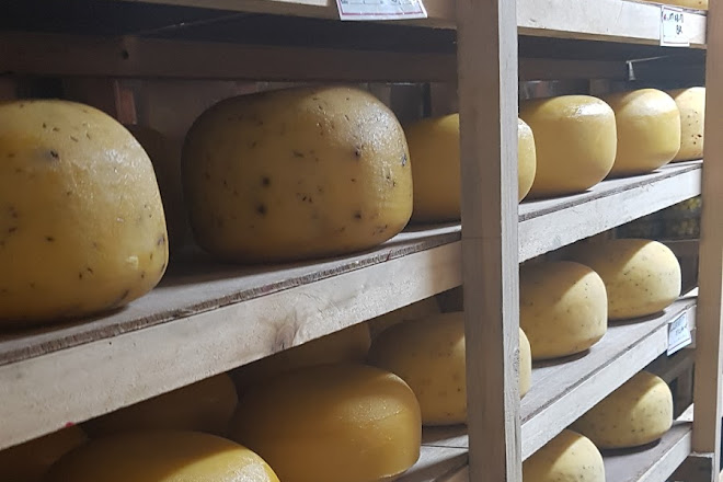 Latana Cheese, Oudtshoorn, South Africa