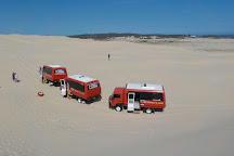 Stockton Sand Dunes, Port Stephens, Australia