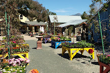 Cambria Nursery and Florist, Cambria, United States