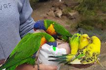 Glen Forest Tourist Park, Port Lincoln, Australia