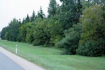 Trusu Pilsetina, Bauska, Latvia