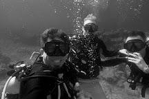 AlfaScuba Dive Center, Cancun, Mexico