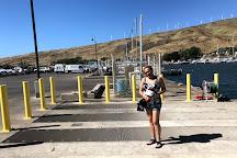 Maui Reef Adventures, Maui, United States