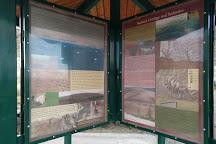 Badger Mountain Centennial Preserve, Richland, United States
