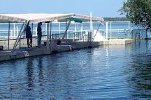 Dolphins Plus Bayside, Key Largo, United States