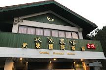 Wuling Farm, Heping District, Taiwan