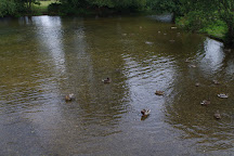 Harnham Water Meadows, Salisbury, United Kingdom