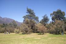 O'Neills Creek Picnic Reserve, Gowrie Park, Australia