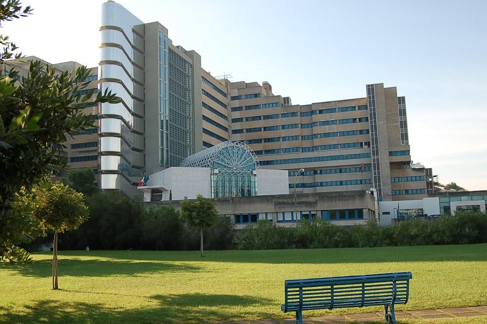Azienda Ospedaliera G. Brotzu