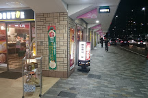 Plico Tarumi, Kobe, Japan