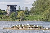 Site Ornithologique des Cinq Tailles, Thumeries, France