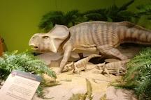 Kenosha Public Museum, Kenosha, United States