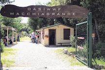 Oasi di Macchiagrande, Rome, Italy