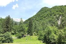 Alpine Botanical Garden Juliana, Trenta, Slovenia
