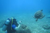 Sakura Marine Sports, Garapan, Northern Mariana Islands