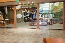Ziibiwing Center, Mount Pleasant, United States
