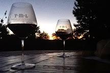 VML Winery, Healdsburg, United States