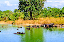 Udawalawe National Park, Udawalawe National Park, Sri Lanka
