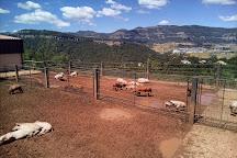 EcoGranja Salgot, Aiguafreda, Spain