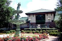 Eckhart Public Library, Auburn, United States