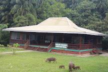 Bako National Park, Kuching, Malaysia
