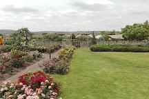 Ludwig's Rose Farm, Pretoria, South Africa