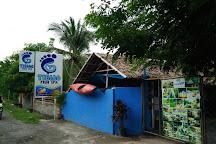 Tibiao Fish Spa, Tibiao, Philippines